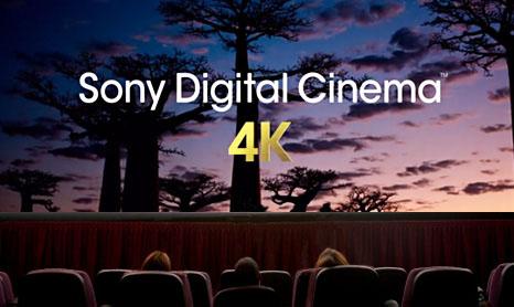 Фильмы в 4К