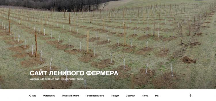 Сайт goldenhill.ru
